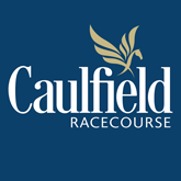 Culfield Logo